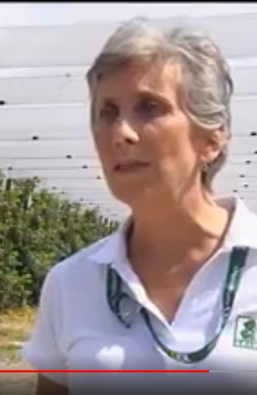 Intervista Silvia Salvi