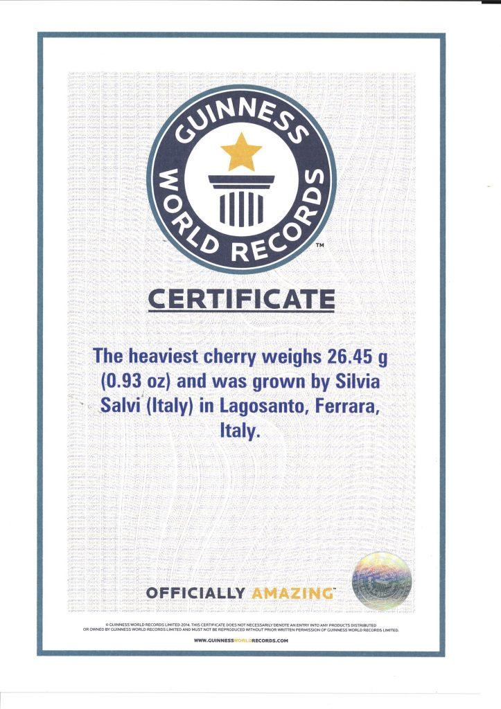 Guinness World Records - Sweet Stephany